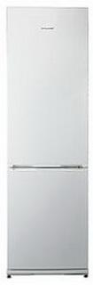 Холодильник Snaige  RF36SM-S10021 - 262